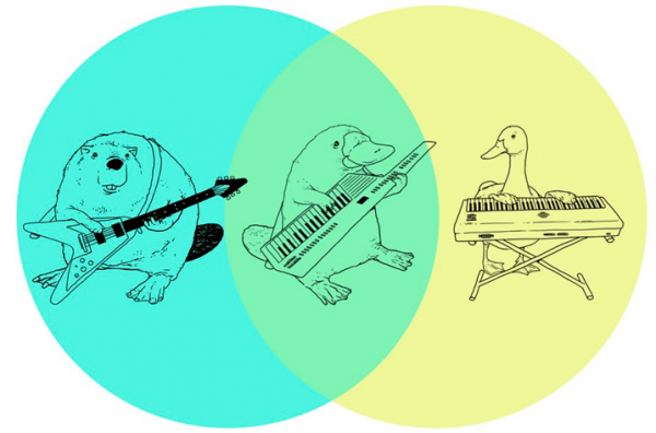 What do you get if you cross a guitar-playing beaver with a keyboard-playing goose?